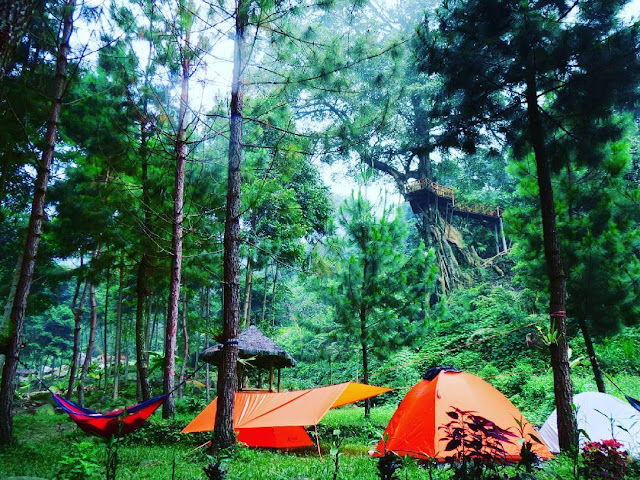 CAMPING GROUND CURUG CIPAMINGKIS