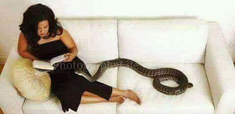 True Life Story: A woman who slept with a pet snake