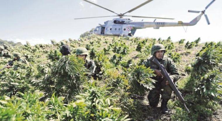 Aumentan los narcolaboratorios en territorio de El Chapo