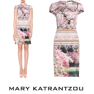 Princess Mary Style MARY KATRANTZOU Printed Silk Dress