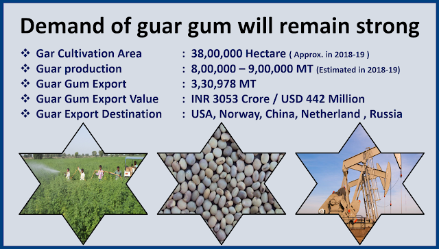 Guar gum demand will remain strong,Guar, guar gum, guar price, guar gum price, guar demand, guar gum demand, guar seed production, guar seed stock, guar seed consumption, guar gum cultivation, guar gum cultivation in india, Guar gum farming, guar gum export from india , guar seed export, guar gum export, guar gum farming, guar gum cultivation consultancy, today guar price, today guar gum price, ग्वार, ग्वार गम, ग्वार मांग, ग्वार गम निर्यात 2018-2019, ग्वार गम निर्यात -2019, ग्वार उत्पादन, ग्वार कीमत, ग्वार गम मांग, Guar Gum, Guar seed, guar , guar gum, guar gum export from india, guar gum export to USA, guar demand USA, guar future price, guar future demand, guar production 2019, guar gum demand 2019