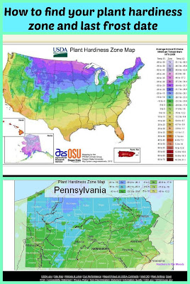 plant hardiness zones, USA, last frost date