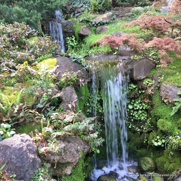 three-level waterfall at Hakone Gardens in Saratoga, California
