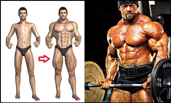 THE BEST WAY TO GAIN MUSCLE – 5 HELPFUL TIPS FOR SKINNY GUYS