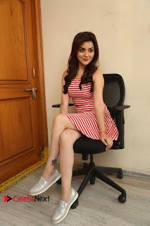 Actress Ragini Nandwani Pictures at Siddhardha Movie Interview  0280