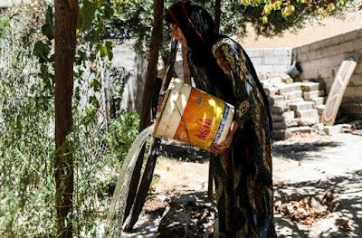 Près de Raqa en guerre, Warda al-Jassem revient arroser sa vigne dans - ECLAIRAGE - REFLEXION a12