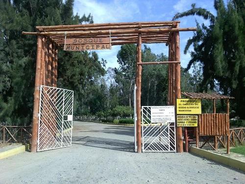Bosque Municipal de Tacna