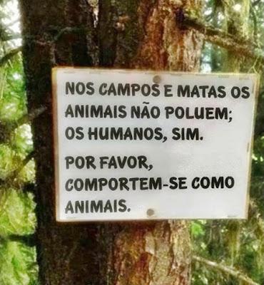 """Placa bem-humorada proibindo poluição em mata: """"Nos campos e matas os animais não poluem; os humanos, sim. Por favor, comportem-se como animais""""."""