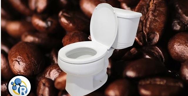 Γιατί ο καφές μάς κάνει να θέλουμε να πάμε τουαλέτα; (βίντεο)