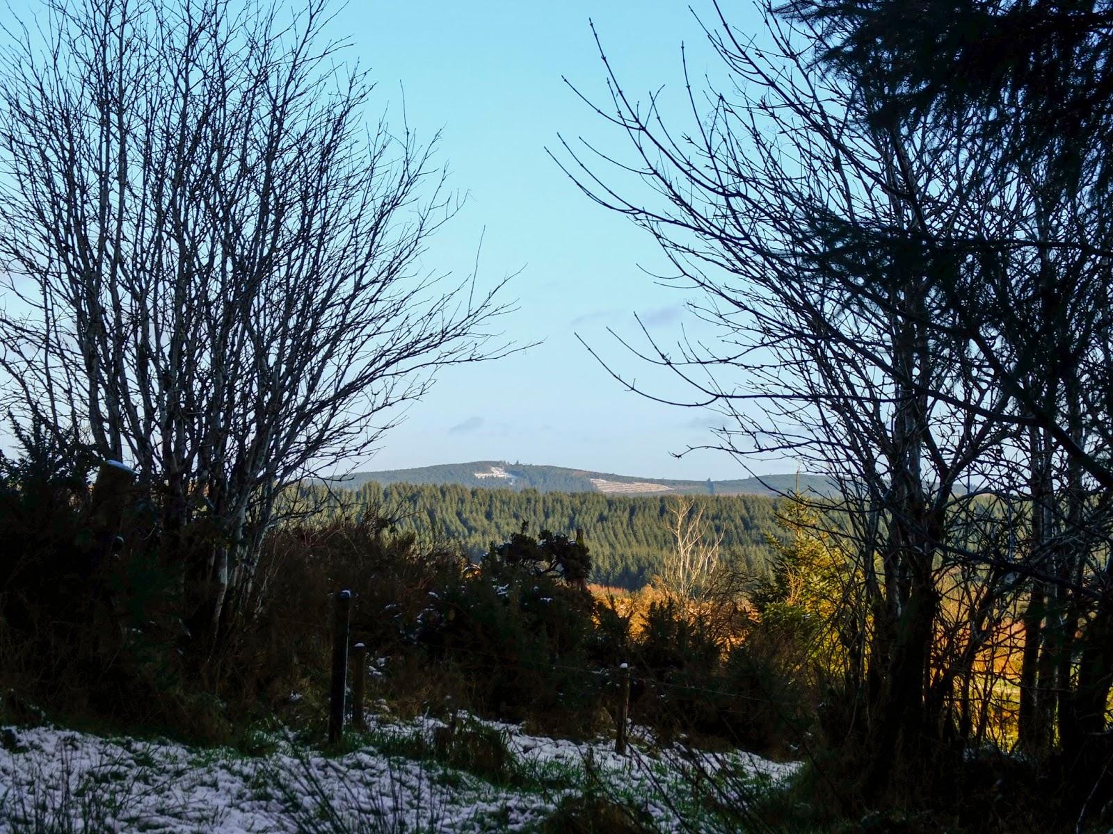 A frosty mountain landscape on a sunny day.
