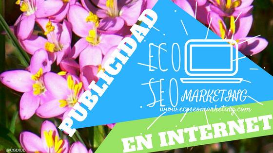 Publicidad en Internet, Información sobre precios de Eco Seo Marketing