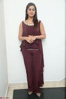 Nikki Galrani in a Brown Shining Sleeveless Gown at Nakshatram music launch ~  Exclusive 033.JPG