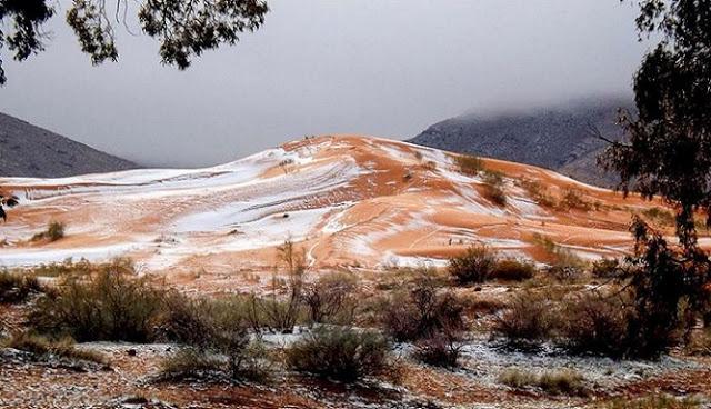 Menakjubkan, Salju Turun di Gurun Sahara