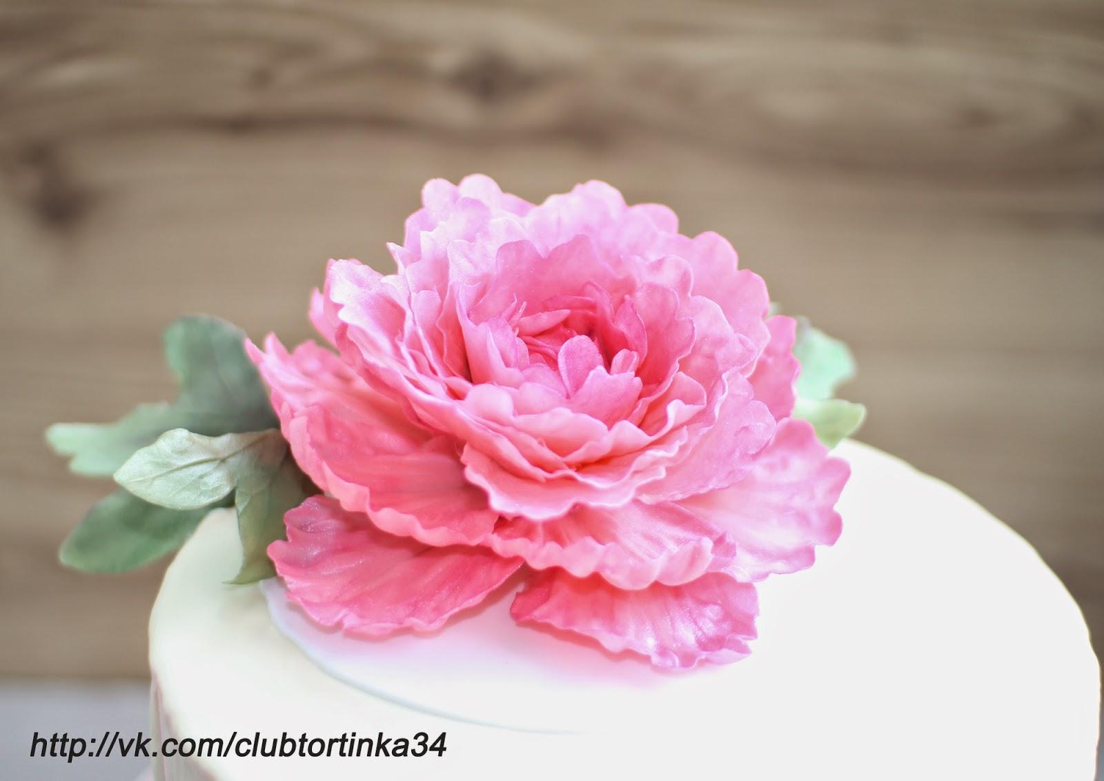 Сахарные цветы на торт фото