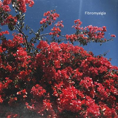 ViVii Unveil New Single 'Fibromyalgia'