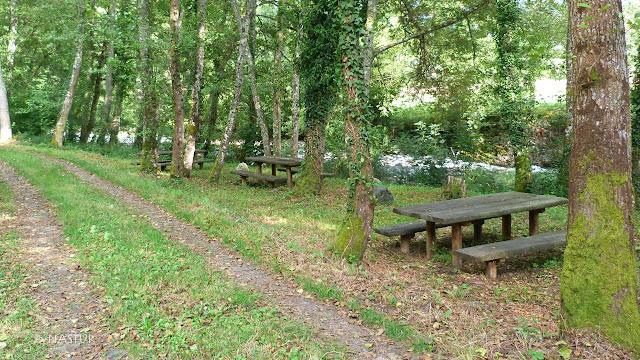 Área con mesas junto al Río Ibias - Senda del Oro