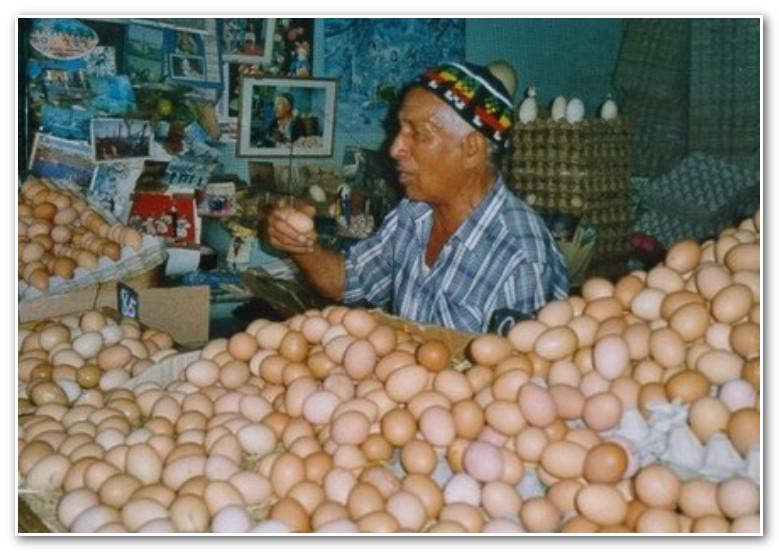 المغاربة استهلكوا 180 بيضة للفرد خلال سنة الماضية