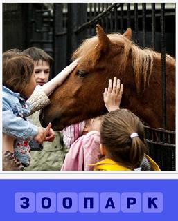 дети в зоопарке играют  с лошадью