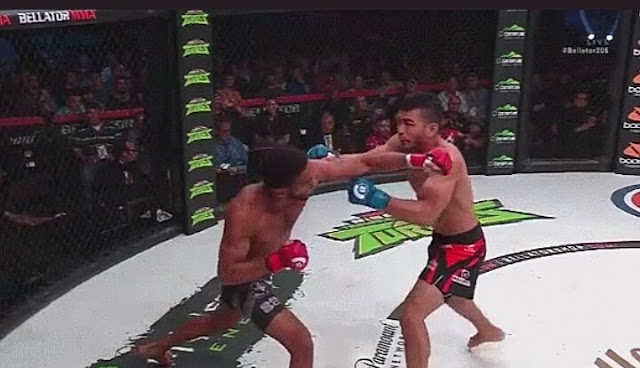 A.J. McKee stops John Macapa With One Punch