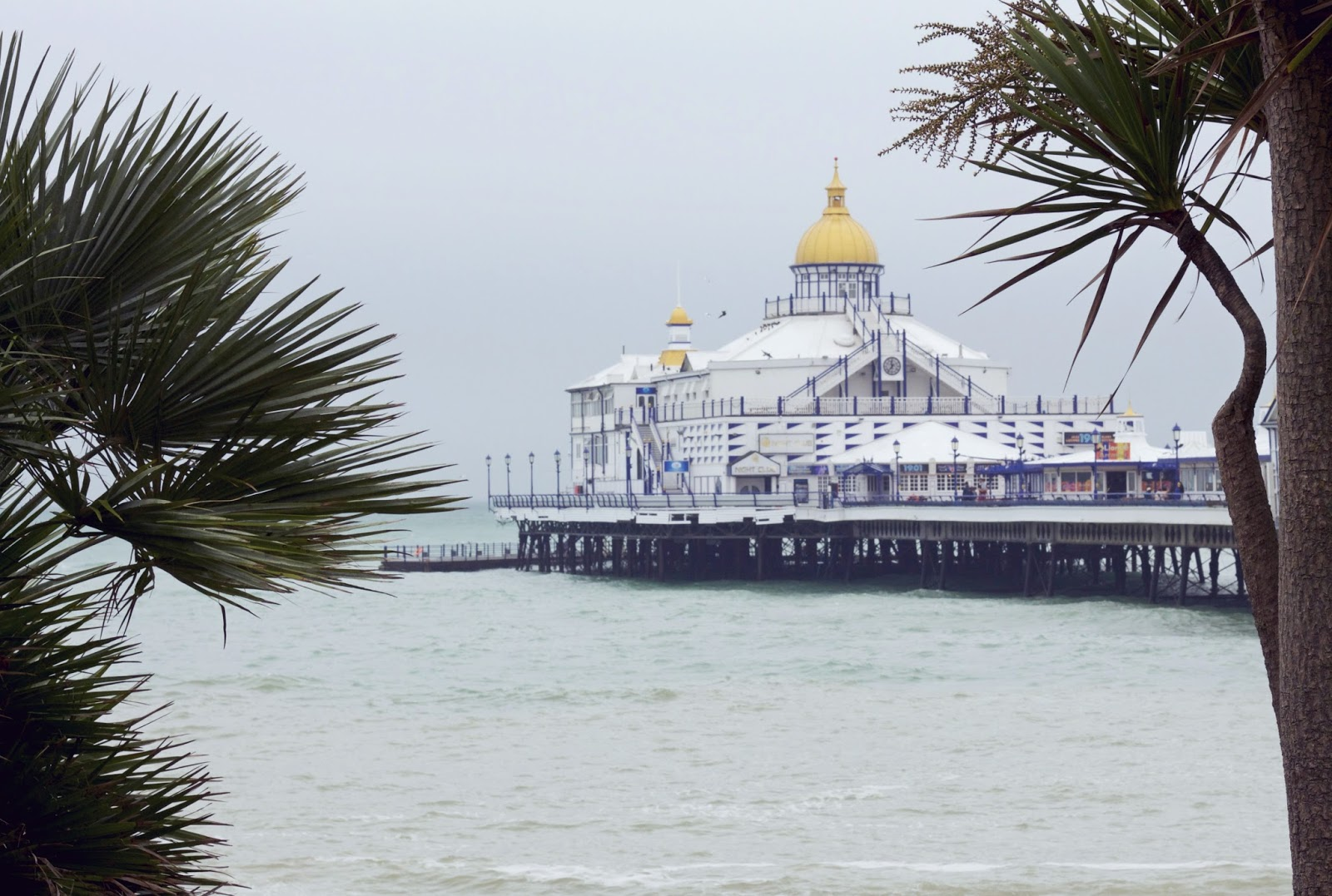 Eastbourne Pier, Eastbourne Palm Trees, Day out in Eastbourne, British seasides, down south UK, Palm trees, uk blogger, travel blogging, travel and lifestyle, eastbourne, 100 Ways to 30 Blog