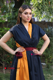 Actress Hansika Motwani Latest Pos at Bogan Movie Press Meet  0033.jpg