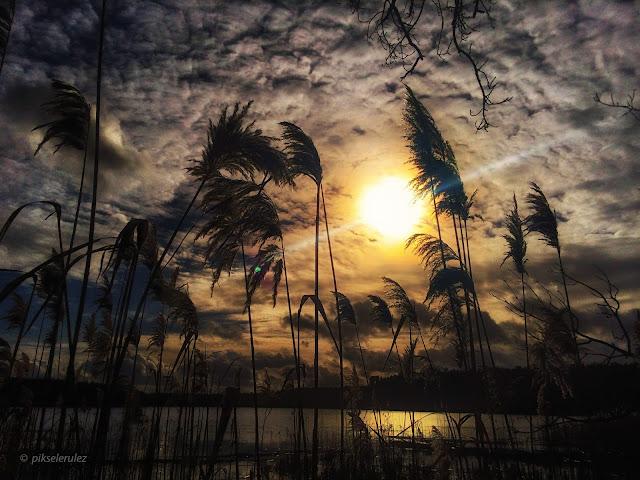 Śpierewnik, lake, Bory Tucholskie, Agata Raszke, krajobraz, natura, landscapes, Poland,