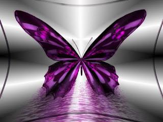 Significado de los sueños: Soñar con Mariposas