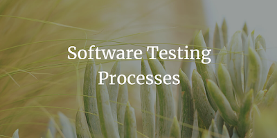 Software Testing Processes
