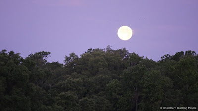 Full Moon setting in the early morning