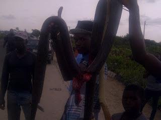 python lekki epe lagos