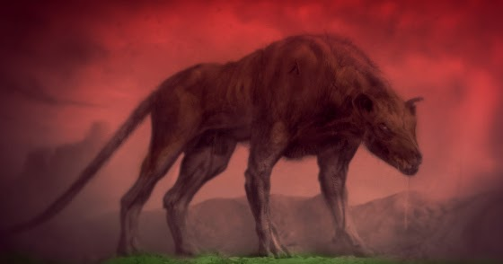 Lancashire 'Hellhound?'
