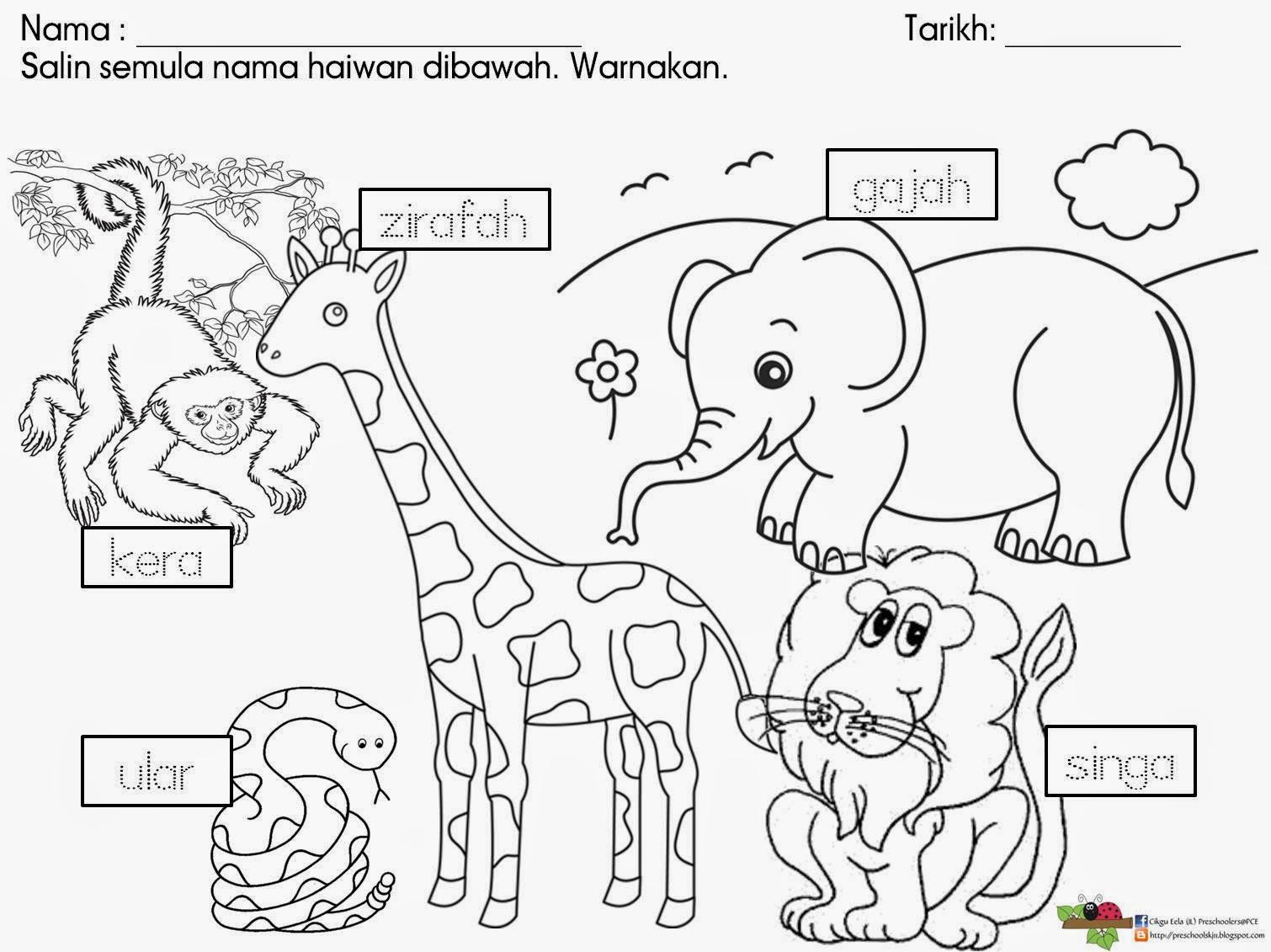 Cikgu Eela Il Preschoolers Pce Lembaran Kerja Haiwan Liar