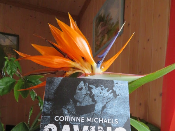 Consolation, tome 1 : Saving her de Corinne Michaels