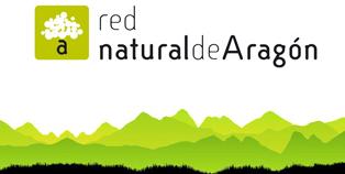 Naturaleza y Voluntariado Ambiental: Actividades de Otoño en la ...