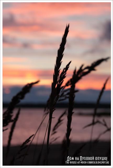 Финский залив на закате