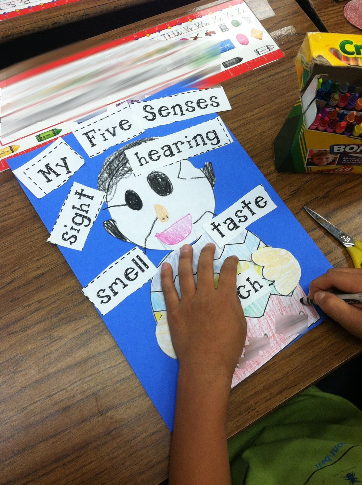 Five Senses Worksheets For Kindergarten
