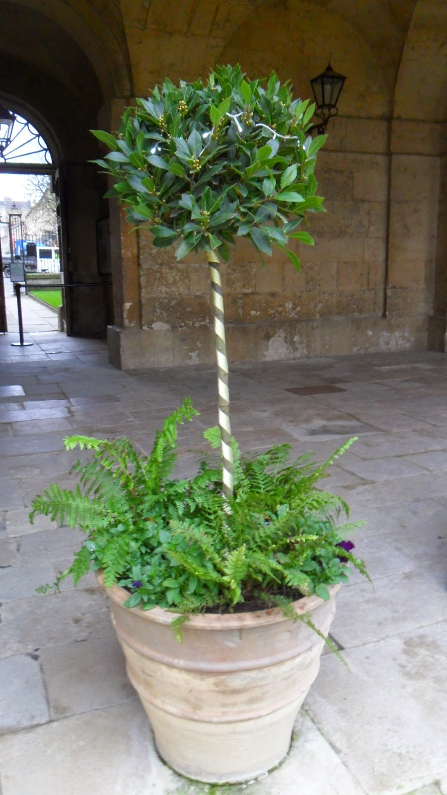 Worcester College Gardeners 2009 2018 Christmas Decorations