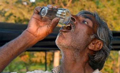 Aneh! Banyak Pria Minum Urin Sapi Untuk Menghilangkan Jerawat