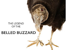 What Happened To The Belled Buzzard?