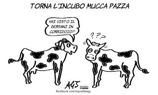 bersani, mucca, metafore, satira, vignetta