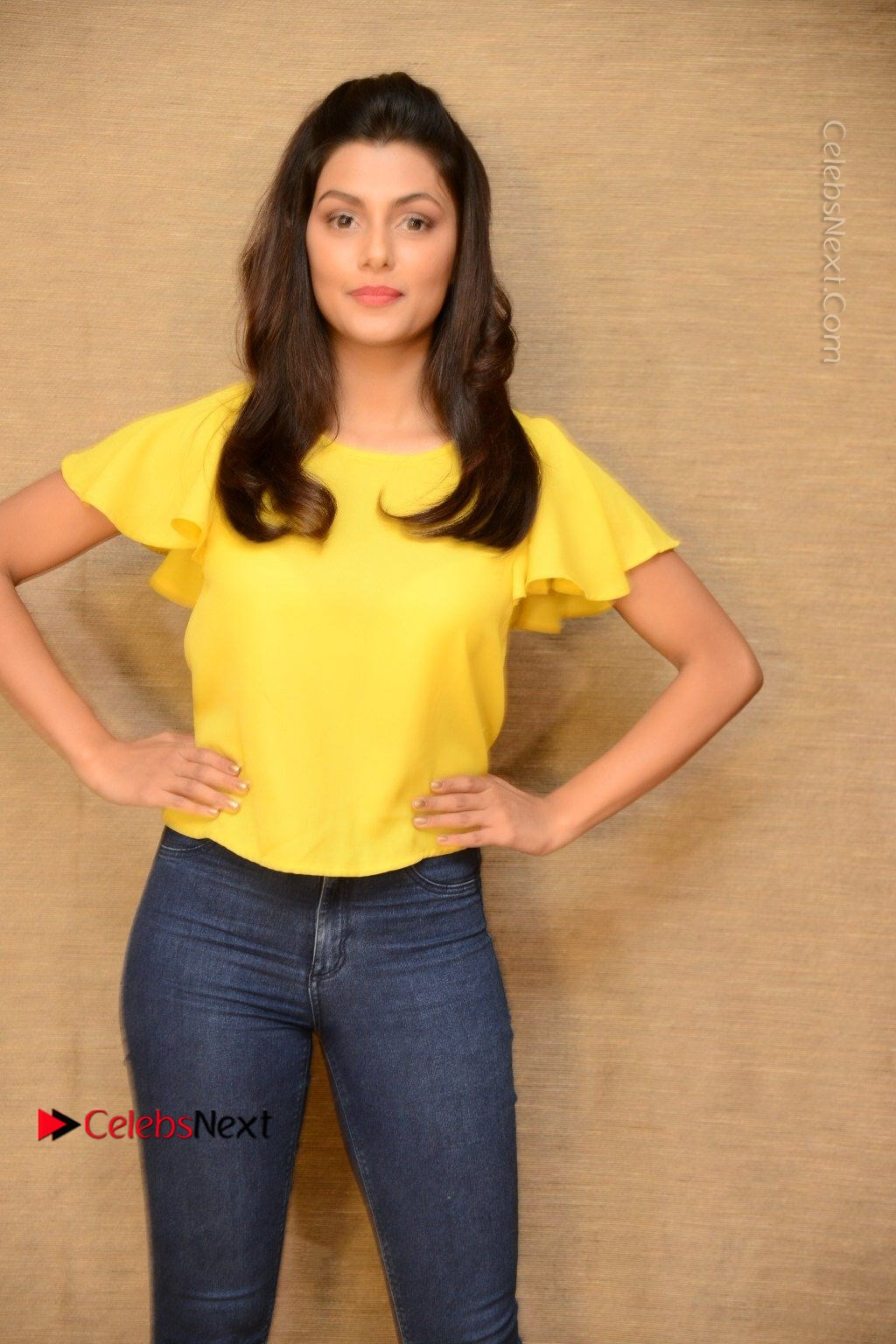 Actress Anisha Ambrose Latest Stills In Denim Jeans At Fashion Designer So Ladies Tailor Press Meet Com 0040 Anisha Ambrose Latest Stills In Denim Jeans At Fashion Designer S O Ladies Tailor
