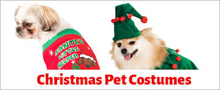 Costume ideas for your Dog and pets