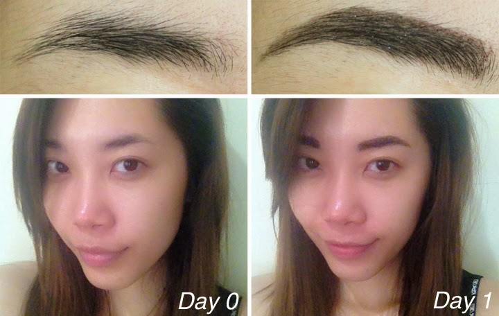 Review Tony Moly 7 Days Tattoo Eyebrow Beauty Appetite By Jessica