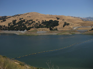 North end of Calaveras Reservoir near the dam, Alameda County, California