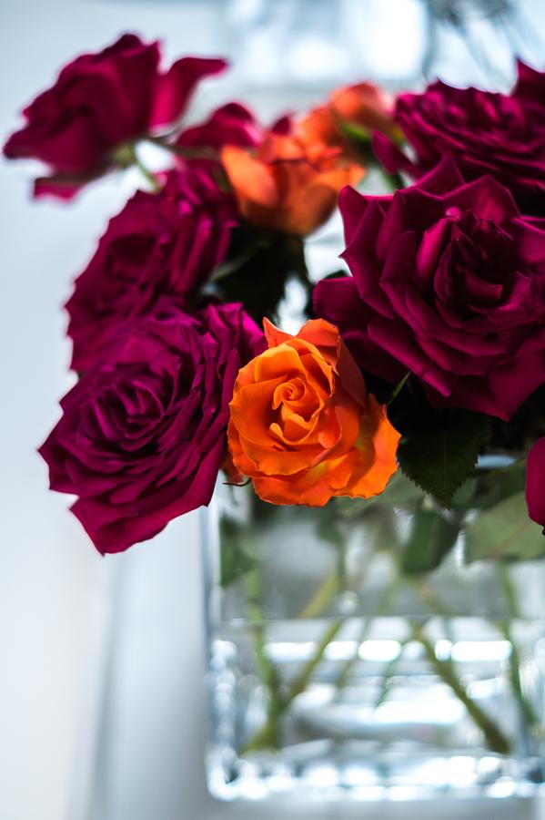 Blog + Fotografie by it's me! | fim.works | Geburtstagsblumen in Knallfarben | aufgeblühte Rosen in Orange und Pink