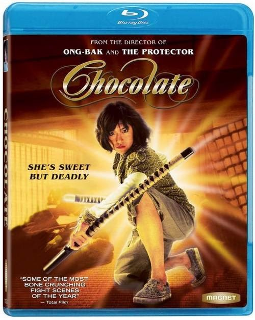 Chocolate 2008 Hindi Dubbed BRRip 720p 1GB