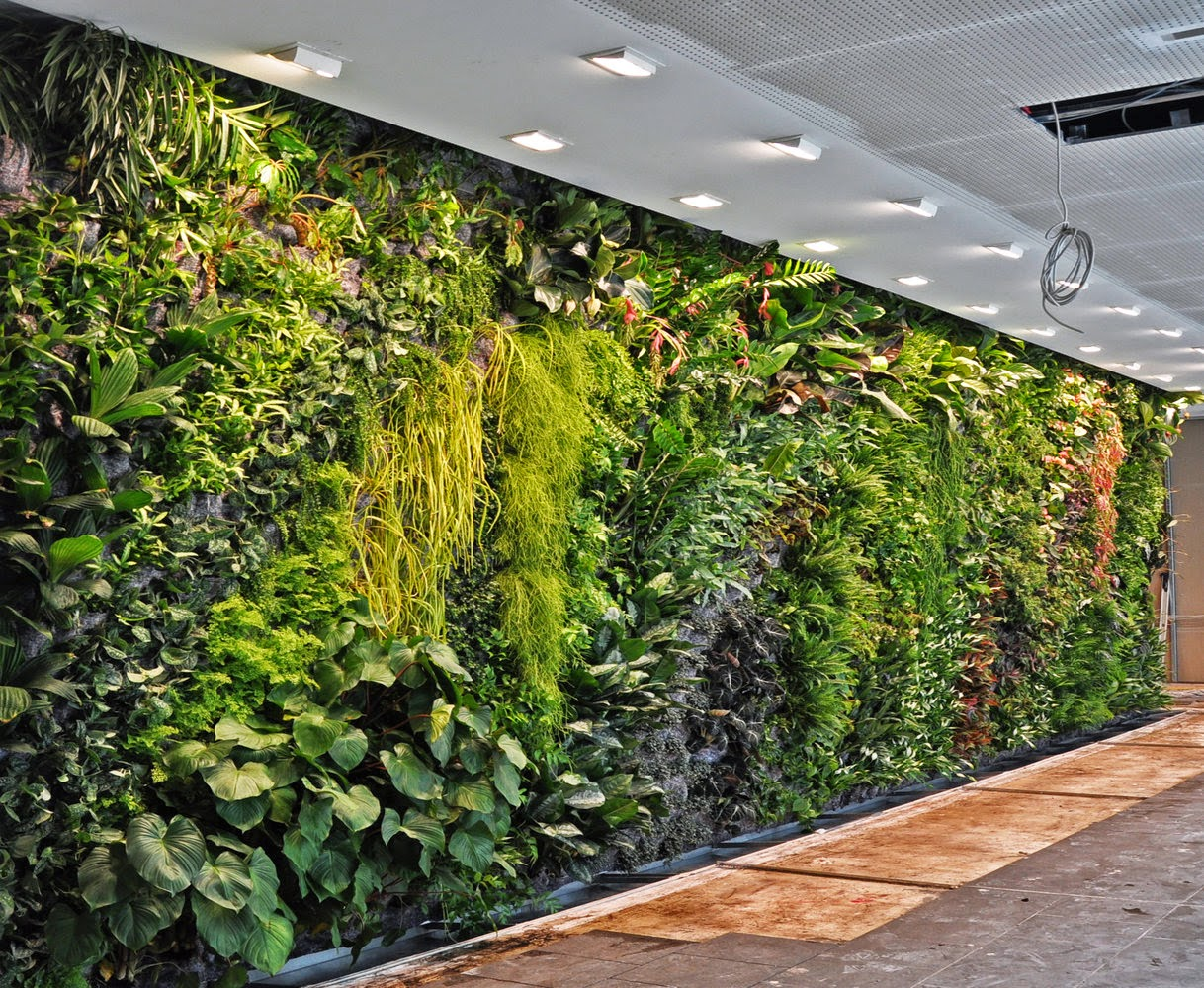 Kissing The Earth: Patrick Blanc And Urban Vertical Gardening