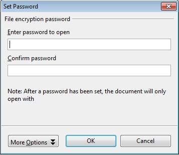 set password for file