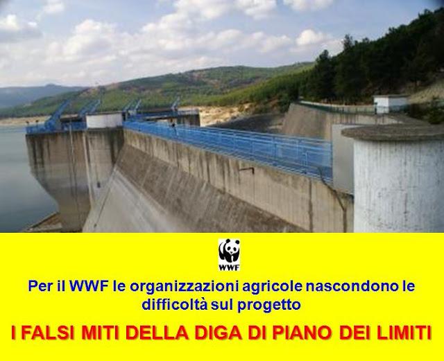 """""""I falsi miti della diga di Piano dei Limiti"""", per il WWF Foggia le organizzazioni agricole nascondono le difficoltà sul progetto"""