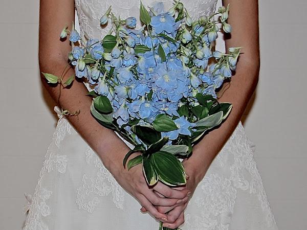 Wedding Wednesday with WeddingWire: Stress Free Planning